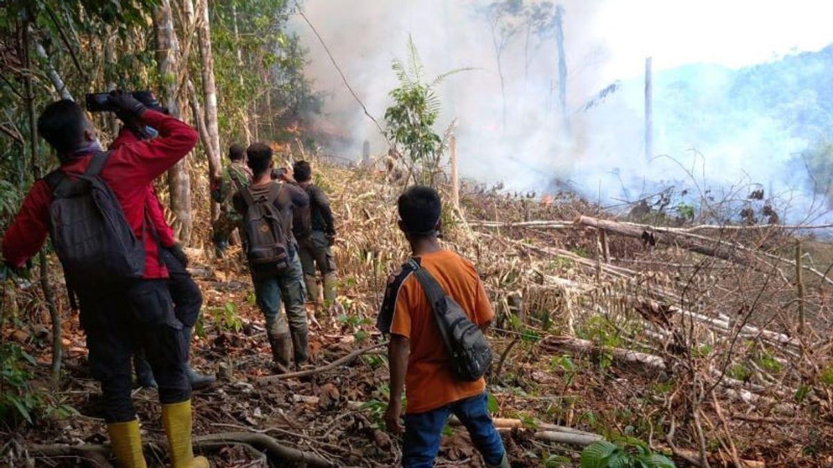 Kebakaran di Taman Nasional Riau Padam setelah 16 kali Pengeboman Air