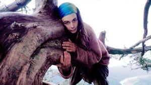 18 Desember dalam Sejarah: Julia Butterfly Hill Turun setelah Habiskan Dua Tahun Tinggal di atas Pohon