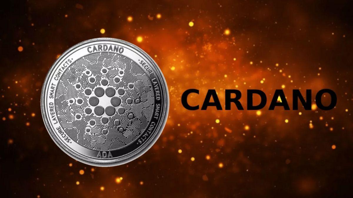超过 200 份智能合约已进入卡达诺区块链网络