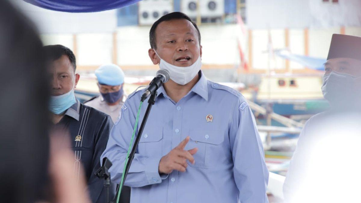 Disinggung Susi Pudjiastuti Soal Eksportir Benih Lobster, Edhy Prabowo: Bukan Rahasia dan Bisa Dicek