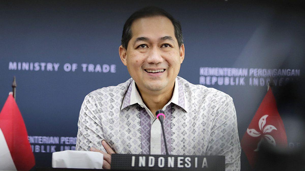 Mendag Lutfi Siap Kejar Ekspor Sarang Burung Walet Rp16 Triliun ke China, Jokowi Minta Kemendag-Kementan Satu Suara