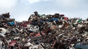 Beberapa Hewan di Indonesia Memang Sengaja Diberi Makan Sampah