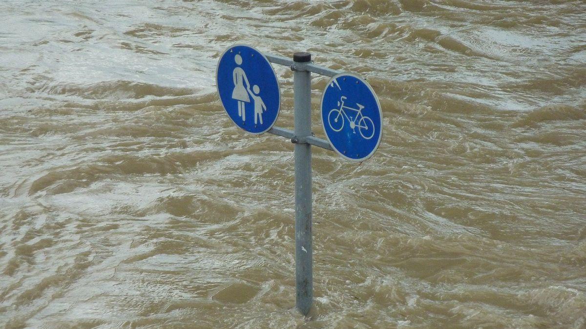 Lima Pekerjaan Rumah Kepala Dinas SDA Baru untuk Benahi Banjir Jakarta
