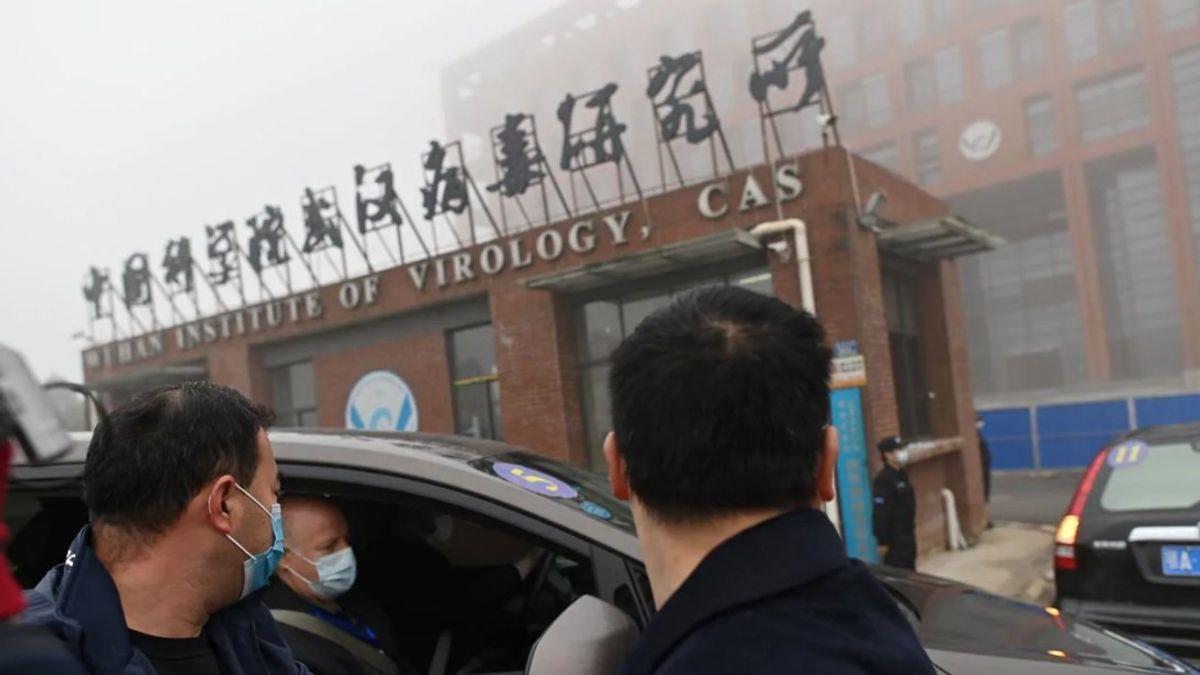 WHO Akan Segera Rilis Laporan Lengkap Tim Investigasi Virus Corona di Wuhan